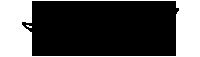 Logo Quick Lane